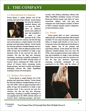 0000094501 Word Template - Page 3