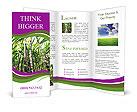 0000094502 Brochure Templates