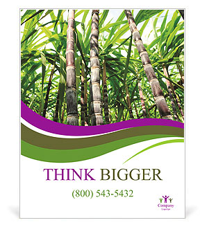 0000094502 Poster Template