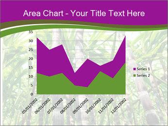 Sugarcane plants PowerPoint Template - Slide 53