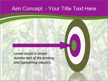 Sugarcane plants PowerPoint Template - Slide 83