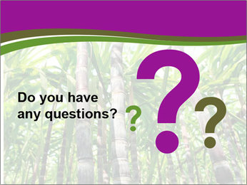 Sugarcane plants PowerPoint Templates - Slide 96