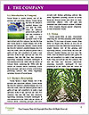 0000094502 Word Template - Page 3