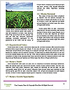 0000094502 Word Template - Page 4