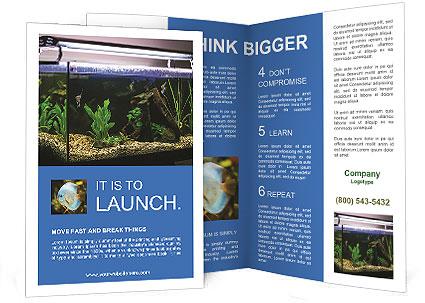 0000094503 Brochure Template