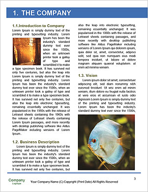 0000094503 Word Template - Page 3