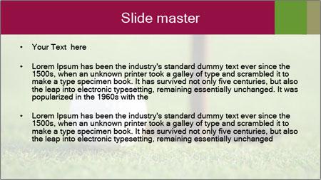 Golf ball PowerPoint Template - Slide 2