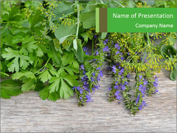 Fresh aromatic herbs PowerPoint Templates - Slide 1
