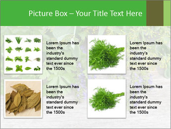 Fresh aromatic herbs PowerPoint Templates - Slide 14