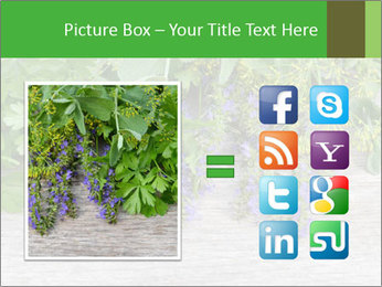 Fresh aromatic herbs PowerPoint Templates - Slide 21