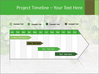 Fresh aromatic herbs PowerPoint Templates - Slide 25