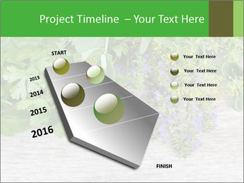 Fresh aromatic herbs PowerPoint Templates - Slide 26
