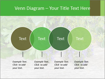 Fresh aromatic herbs PowerPoint Templates - Slide 32