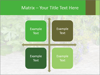Fresh aromatic herbs PowerPoint Templates - Slide 37