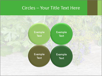 Fresh aromatic herbs PowerPoint Templates - Slide 38