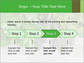 Fresh aromatic herbs PowerPoint Templates - Slide 4