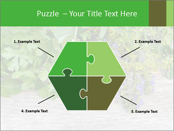 Fresh aromatic herbs PowerPoint Templates - Slide 40