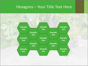 Fresh aromatic herbs PowerPoint Templates - Slide 44