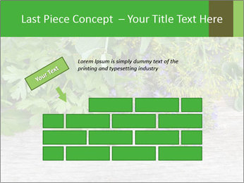 Fresh aromatic herbs PowerPoint Templates - Slide 46