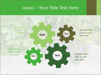 Fresh aromatic herbs PowerPoint Templates - Slide 47