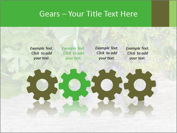 Fresh aromatic herbs PowerPoint Templates - Slide 48