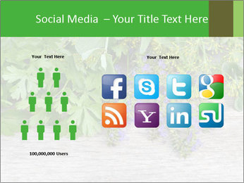 Fresh aromatic herbs PowerPoint Templates - Slide 5