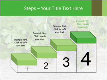 Fresh aromatic herbs PowerPoint Templates - Slide 64