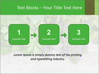 Fresh aromatic herbs PowerPoint Templates - Slide 71