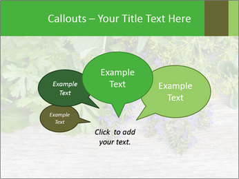 Fresh aromatic herbs PowerPoint Templates - Slide 73