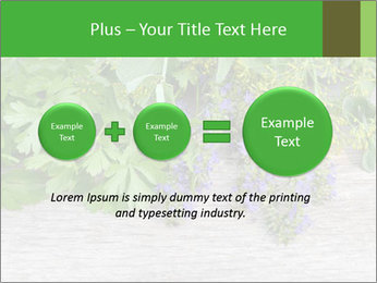 Fresh aromatic herbs PowerPoint Templates - Slide 75