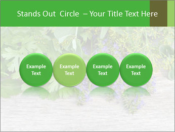 Fresh aromatic herbs PowerPoint Templates - Slide 76