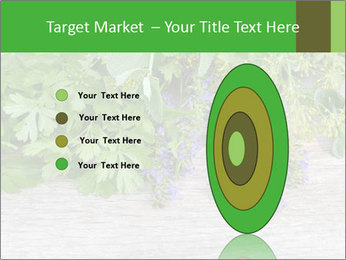 Fresh aromatic herbs PowerPoint Templates - Slide 84