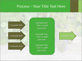 Fresh aromatic herbs PowerPoint Templates - Slide 85