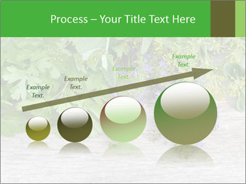 Fresh aromatic herbs PowerPoint Templates - Slide 87