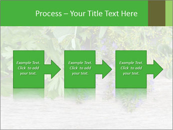 Fresh aromatic herbs PowerPoint Templates - Slide 88