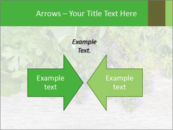 Fresh aromatic herbs PowerPoint Templates - Slide 90