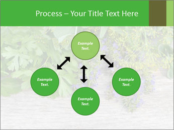 Fresh aromatic herbs PowerPoint Templates - Slide 91