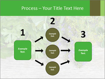Fresh aromatic herbs PowerPoint Templates - Slide 92