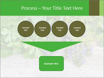 Fresh aromatic herbs PowerPoint Templates - Slide 93