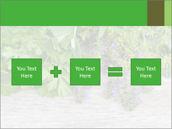 Fresh aromatic herbs PowerPoint Templates - Slide 95