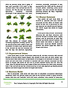 0000094512 Word Templates - Page 4