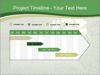 Wedding bouquet PowerPoint Templates - Slide 25