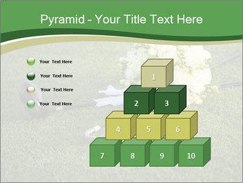 Wedding bouquet PowerPoint Templates - Slide 31