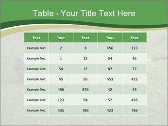 Wedding bouquet PowerPoint Templates - Slide 55