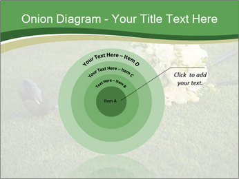 Wedding bouquet PowerPoint Templates - Slide 61