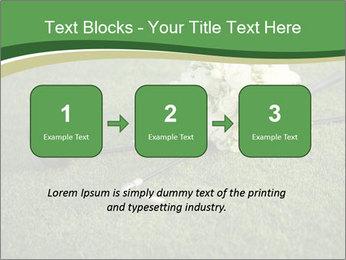 Wedding bouquet PowerPoint Templates - Slide 71