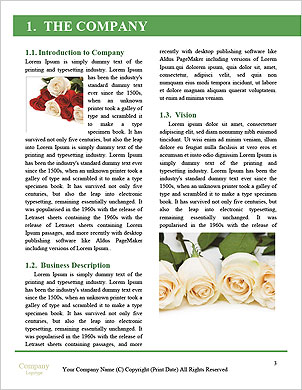 0000094515 Word Template - Page 3