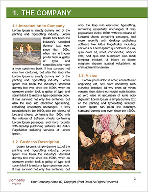 0000094516 Word Template - Page 3