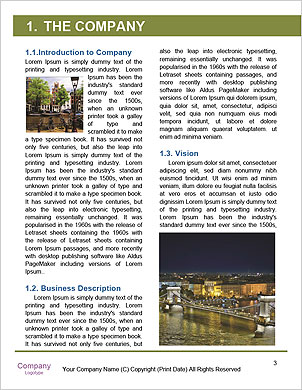 0000094520 Word Template - Page 3