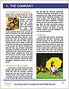 0000094525 Word Template - Page 3